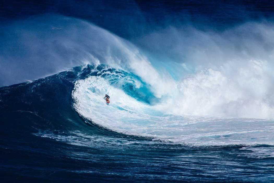 Las_mejores_peliculas_y_documentales_de_surf_2 (1)