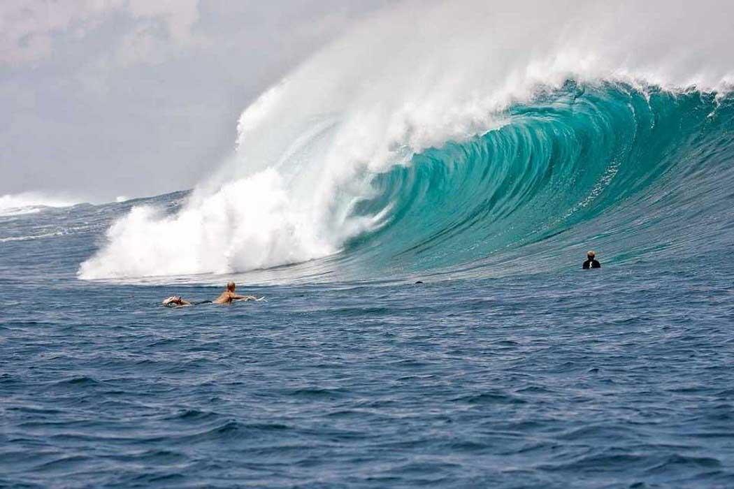 Las_mejores_peliculas_y_documentales_de_surf_3 (1)